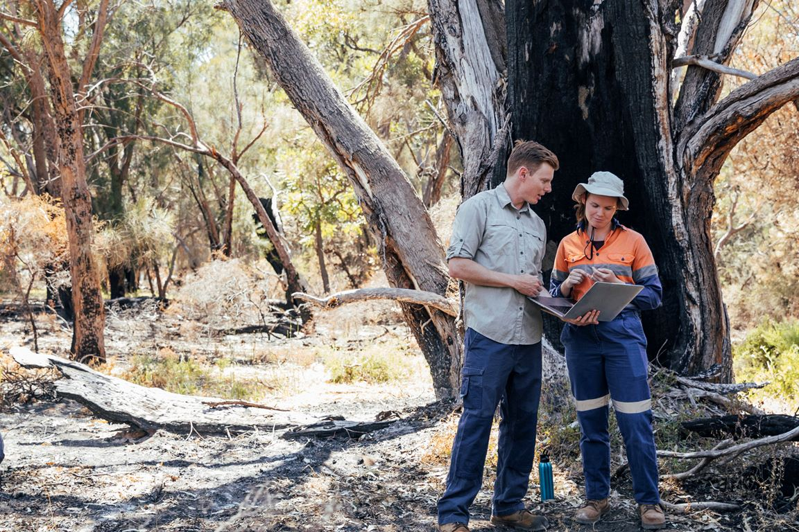Analysing COVID-19 and Bushfire Impacts in LGAs (NSW)